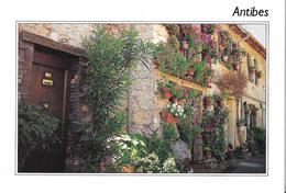 ANTIBES - Maisons Fleuries - Antibes - Vieille Ville