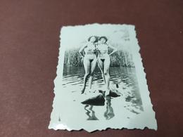 2  WK PHOTO EROTIK SEXY FRAU - Erotiche (...-1960)