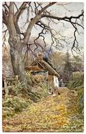 ARTIST : THOMAS BUSHBY - LAKE DISTRICT : AUTUMN, ST. NINIAN'S COTTAGE, BRISCO, NEAR CARLISLE - Other Illustrators