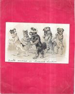 CPA DOS SIMPLE GAUFREE - Balade De Chiens - NANT2 - - Animali Abbigliati