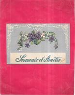 CPA  COLORISEE GAUFREE - Souvenir D'Amitié - NANT2 - - Fancy Cards