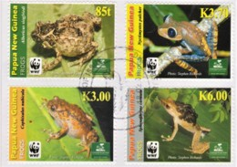 Papua New Guinea 2009 Frogs FDC  WWF - Papua New Guinea