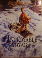 Aff Ciné Orig L INCROYABLE VOYAGE (1993) 120x160 Disney - Plakate & Poster