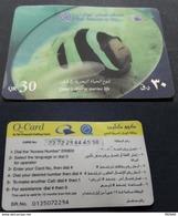 Qatar Phone Card / USED - Qatar