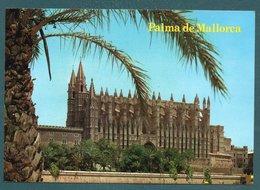 PALMA DE MALLORCA - La Catedral - Palma De Mallorca