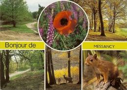 CP BONJOUR De MESSANCY . - Messancy