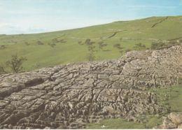 Postcard - Limestone Pavement, Malham, Yorkshire - Card No..82776 Unused Very Good - Postcards