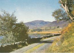 Postcard - Scardray Loch, Strathconan, Ross-Shire - Card No.3431 Unused Very Good - Postcards