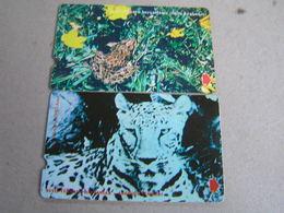 2 X TURKEY Used Card Animal And Frog - Türkei