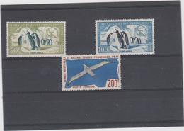 TAAF Série Compléte 3 T Neufs Xx Oiseaux Albatros Skuas - An 1959 N°YT 12 13 PA  4 - Palmípedos Marinos
