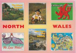 Postcard - Ben Wyvis From Strath Garve - Card No..5148 Unused Very Good - Postcards