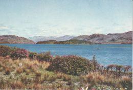 Postcard - Inverness - Shire - Loch Morar - Card No.4408 Unused Very Good - Postcards