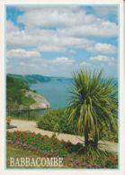 Postcard - Babbacombe Nr. Torquay, South Devon Card No..psd29647 Unused Very Good - Postcards