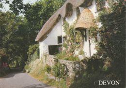 Postcard - Devon Cottage At Ringmore Card No..2470016 Unused Very Good - Postcards