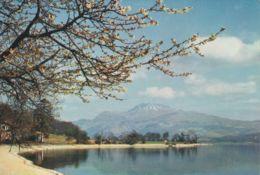 Postcard - Loch Lomond And Ben Lomond - Card No..3415g Unused Very Good - Postcards
