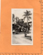 Guam 1920 Photo - Guam