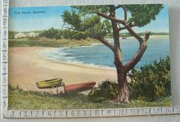 Bermuda - Bermuda - Pink Beach - SP1852 - Postkaarten
