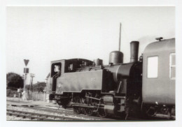 Photo - Locomotive 030 Construite Par Fives-Lille En 1947 - Immatriculée 501, En Gare De Pontaubault - Manche - Ducey - Ducey