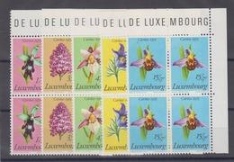 Luxemburg Caritas 1976 Geschützte Pflanzen MiNo. 936/40 ** Eck-4er-Blocks - Ungebraucht