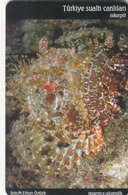 TURKEY - Great Rockfish Sea Life Set ,Chip S35 (Module 35) , 100 Unit ,used - Türkei