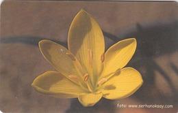 TURKEY - Yellow Flower ,Chip GEM5 (Red) , 100 Unit ,used - Turkey