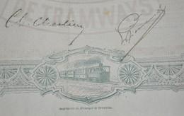 S.A. Belge De Tramways - Bruxelles 1896 - Action Ordinaire - Capital Social - Spoorwegen En Trams