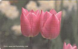 TURKEY - Pink Tulips Flower ,Chip GEM5 (Red) , 50 Unit ,used - Türkei