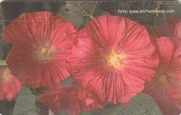TURKEY - Pink Flower ,Chip GEM5 (Red) , 50 Unit ,used - Türkei