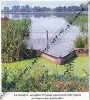 Photo (1987) : LA DOMBES (Ain), Un Millier D'étangs Parsèment Cette Région Au Charme Très Particulier, écluse - Vieux Papiers