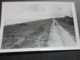 Foto Au Congo Belge, 180cm X 12cm - Belgisch-Congo - Varia