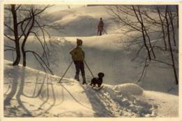 BGute Kamerade - Klopfenstein Adelboden - Ski Hund - BE Berne