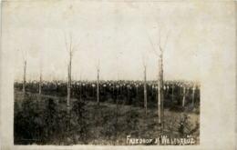 Friedhof Wesekreuz - Weltkrieg 1914-18