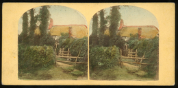 Tinted Stereoview - Isle Of Wight - Visionneuses Stéréoscopiques