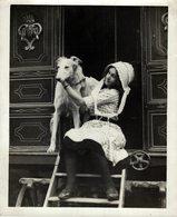 GIRLS HAPPY HOLIDAY CARAVAN DOG HUND ANIMAUX ANIMALS ANIMALES 21*16CM Fonds Victor FORBIN 1864-1947 - Fotos
