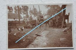 Photo SINT LAMBRECHTS HERK Regio Hasselt Cariole Ferme Hoeve  1931 - Lieux