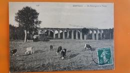 Mirville - Un Paturage Et Le Viaduc - France