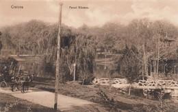 CRAIOVA , Romania , 00-10s ; Parcul Bibescu - Rumania