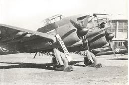 PHOTO AVION POTEZ 63 11    17X11CM - Aviazione