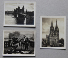 Lot De 3 Photos D'Allemagne (Bonn, Koln) - Photos