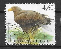 3871 - Belgium
