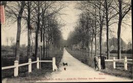 Cp Thorigny Dampmart Sur Marne Seine Et Marne, Allée Du Château Des Fontaînes - Autres Communes