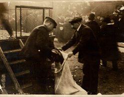 COCK FIGHTING  COMBATS COQS 20*16CM Fonds Victor FORBIN 1864-1947 - Otros