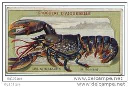 "Chromo Chocolat Aiguebelle Les Crustacés ""homard""  Texte Au Dos 6 X 10.4 Cm - Aiguebelle"