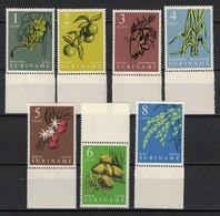 Suriname 1961, Plant Vruchten Fruit Bananen Kokos Citrus Coffee Rijst Suikerriet Cacao **, MNH - Surinam ... - 1975