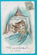 Chat -cpa 1905 Souvenir Le Réveil  Chats Dans Berceau - Cats