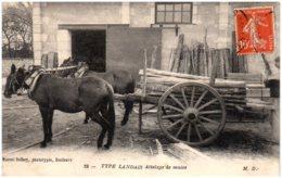 40 TYPES LANDAIS - Attelage De Mules - France