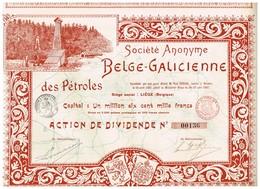 Titre Ancien - Société Anonyme Belge-Galicienne Des Pétroles -Titre De 1897 - Déco - Aardolie