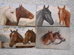 5  Cpa Pferd / Horse / Cheval Illustrateur - Chevaux