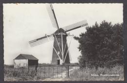 109157/ BORSELE, Hoedekenskerke, Molen - Pays-Bas