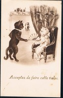 Chats Humanisés - Cat -katzen - Poezen - Katten